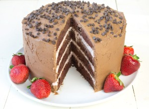 Chocolate-Mousse-Cake-2