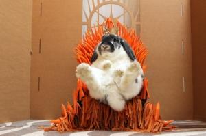 post-61439-game-of-thrones-bunny-rabbit-t-oczl