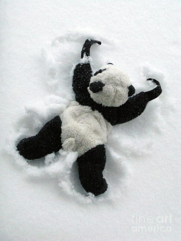 ginny-the-baby-panda-making-a-snow-angel-ausra-paulauskaite