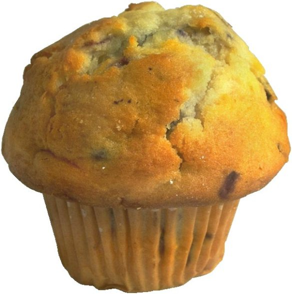 blue-berry-muffin-enlarge(o9czf3)