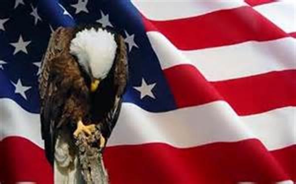 sad-eagle